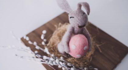 Plush Bunny Toy